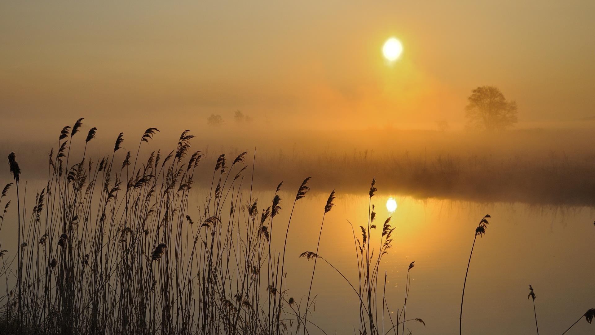 Relaunch Frühling Morgen an der Hamme