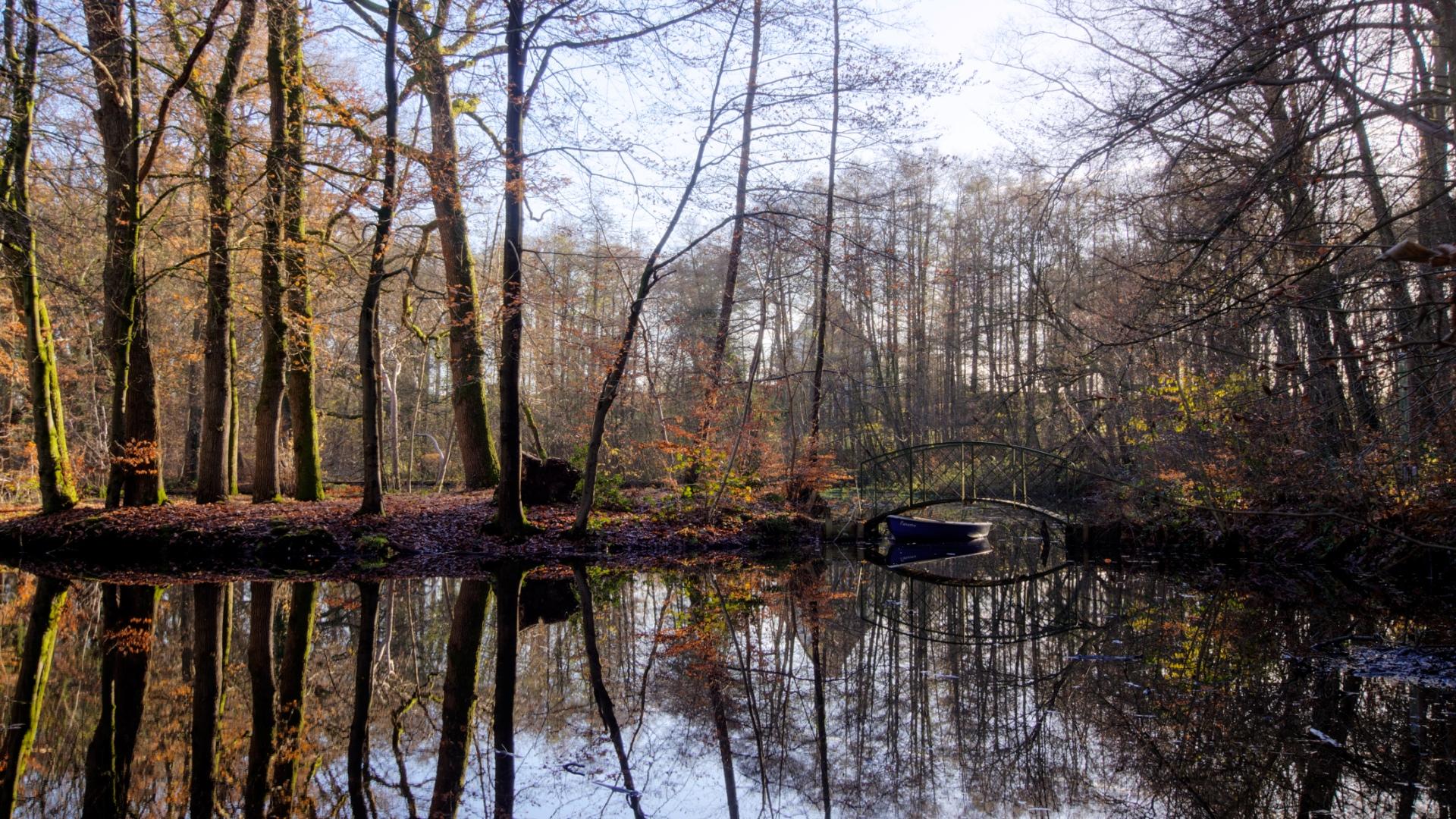 Relaunch Herbst Teich Bredbeck